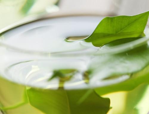 Effect groene thee op de huid